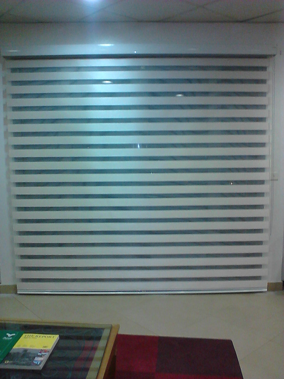 Zebra Blinds Sunflex